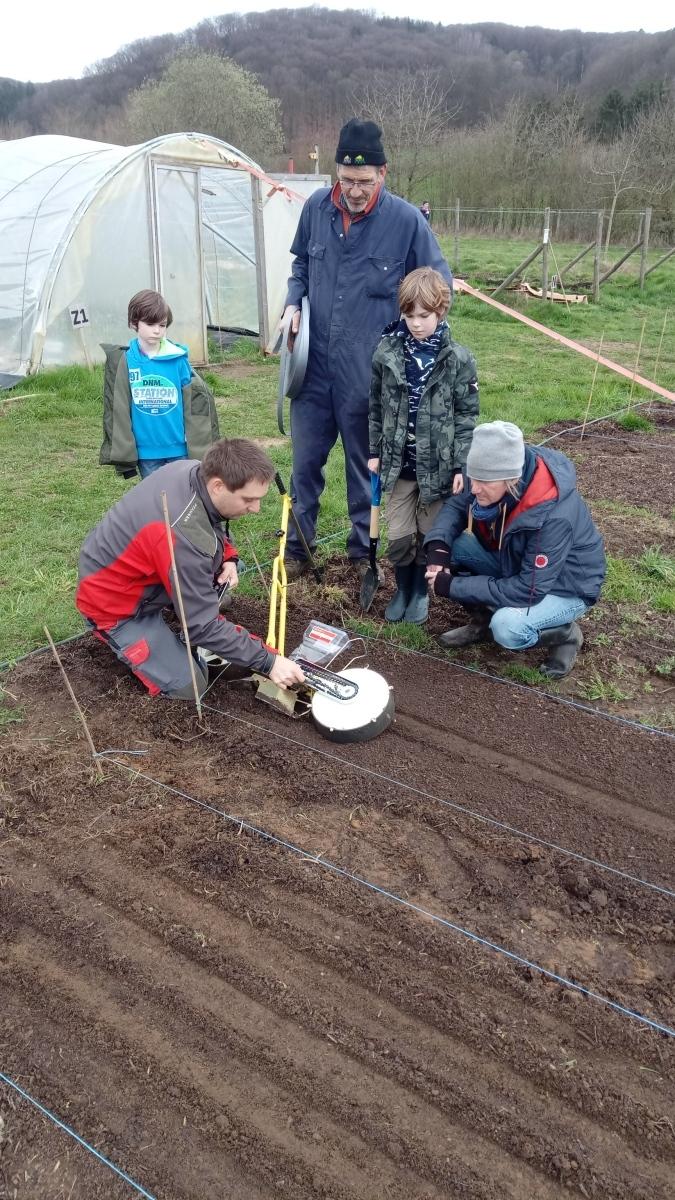 apprendre à semer des carottes